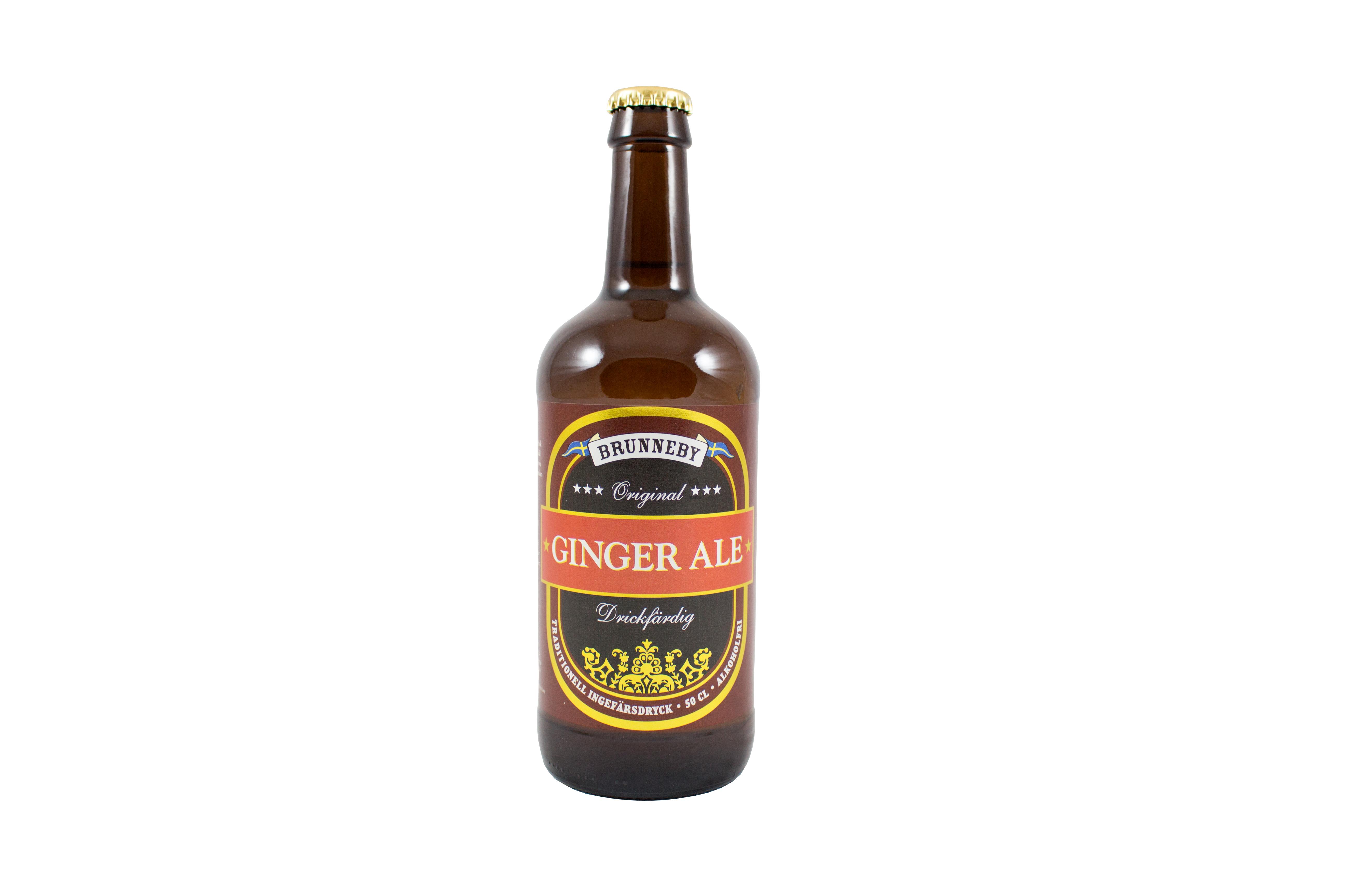 Högupplöst bild på Ginger Ale i 50 cl flaska.